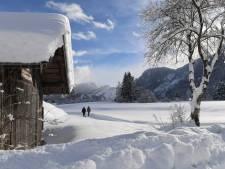 Sneeuw teistert Alpenregio: Vijf doden, duizenden mensen geïsoleerd, bomen bezwijken