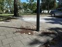 De brokstukken en potgrond die rond een lantaarnpaal liggen vormden gisteren halverwege de middag de stille getuigen van het incident. Net als de witgeblakerde stenen op de naastgelegen parkeerplaats.