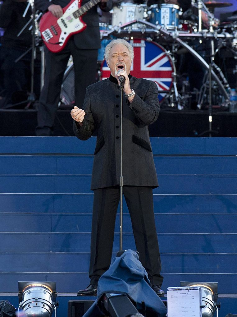 Sir Tom Jones Beeld null