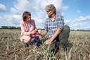 Helma Lodder en Peter Priester constateren een mislukte uienoogst.