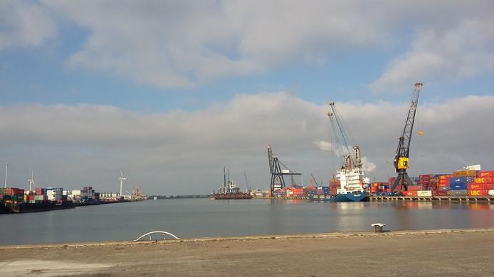 Het havengebied in Moerdijk was zaterdag voor het eerst in 8 jaar weer open voor publiek. Mariette den Engelse