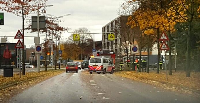 Boom gevallen voor de rotonde op de Freijterslaan in Roosendaal Foto via Whatsapp Peter van roomen