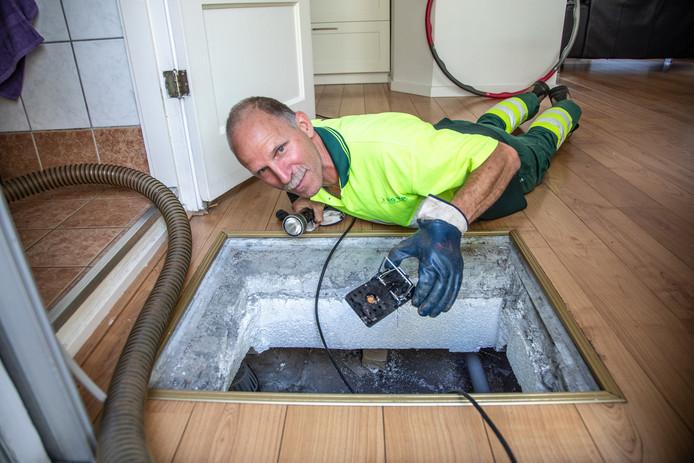 Rattenvanger Jan Marskamp neemt een kijkje in de kruipruimte onder de woning in Assendorp, op zoek naar ratten. ,,Zie je die keutels daar?''