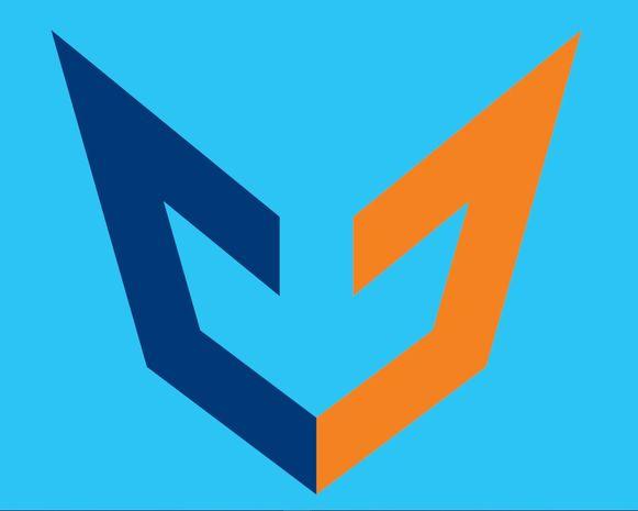 Het nieuwe logo van Devos & Dewanckel. De kleuren verwijzen naar hun merk Ford. Verder vormen twee gestileerde D's het hoofd van een vosje.