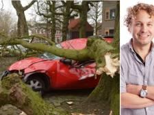Moeten we die bomen nou kappen of koesteren? Over onze haat-liefdeverhouding met de groene joekels