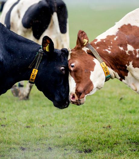 'Klimaatdoelen uitdagend, maar wel haalbaar voor landbouw'