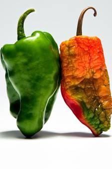 Zo houd je groente en fruit langer goed