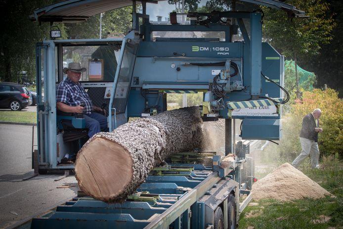 Wim Rechterschot in de cabine van waaruit hij de mobiele houtzagerij bedient bij het zagen van de boomlange eiken voor de bouw van de Ommer Vechtzomp.