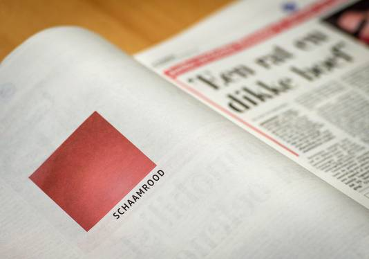 Volkwagen bood in oktober haar excuses aan via paginagrote advertenties in diverse kranten.