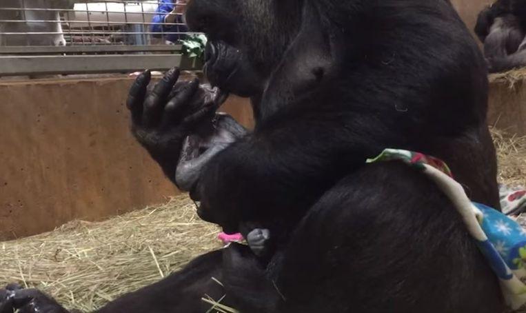 Calaya kust meteen na de geboorte haar baby.