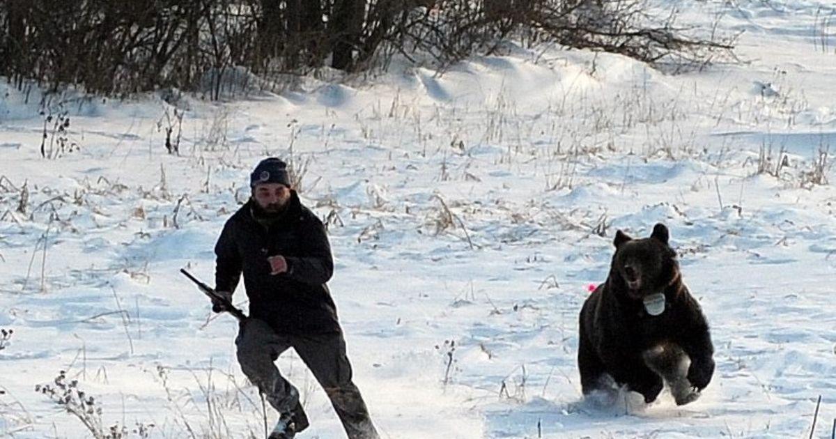 сколько картинка лев бежит за мужчиной подожди чет спрошу нас соски вокруг
