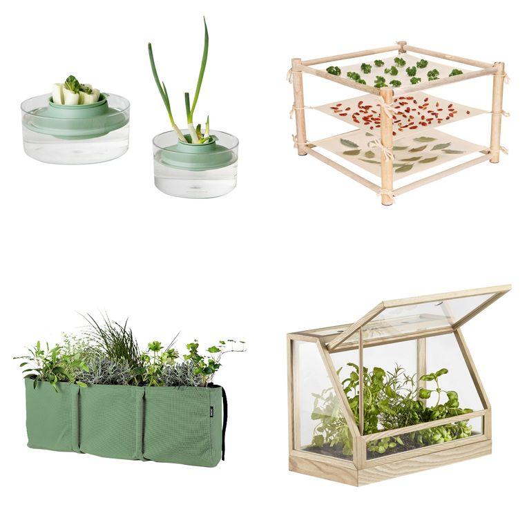 Vanaf links en met de klok mee: hergroeikit, kruidendroogrek, Greenhouse Mini, Bacsac. Beeld