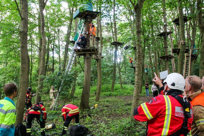 Medewerkers van het hoogtereddingsteam van Veiligheidsregio Rotterdam Rijnmond hebben een ladder tegen de boom gezet om zo bij het plateau te komen.