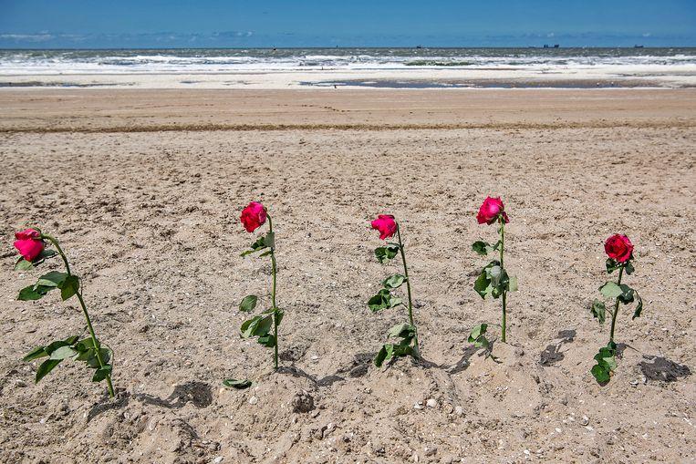 Vijf rozen staan in het strand van Scheveningen: afgelopen maandag verloren vijf surfers het leven toen ze werden overvallen door een enorme hoeveelheid zeeschuim en de gedraaide wind.  Beeld