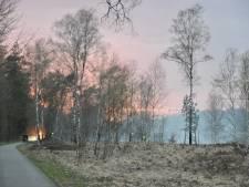 Brandweer heeft bosbrand bij Wolfheze snel onder controle