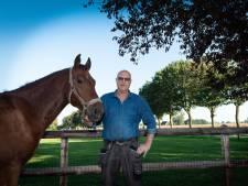 Epe gaat esdoorns niet kappen ondanks dood paard