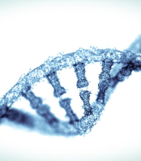Il y a 150 ans, un Suisse découvrait l'ADN