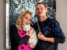 Woede en ongeloof om mishandelde kat Bello: 'Er kwam een stok van 21,5 centimeter uit, en veel bloed'