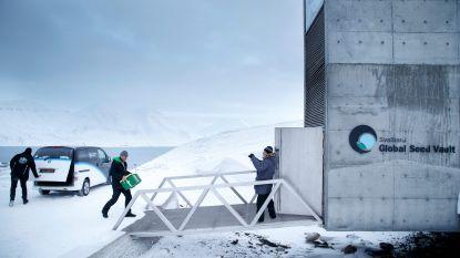 Zorgen om 'onverwoestbare' Wereldzadenbank: overstroomde tunnels door smeltend poolijs