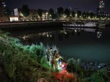 Huurscooter gedumpt in de Binnenhaven op de Kop van Zuid