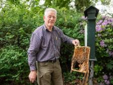 Duizenden bijen dood in Ledeboerpark Enschede