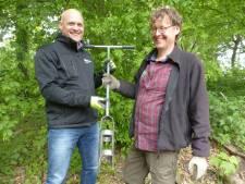 Flevolandse boor voor reuzenberenklauw in productie