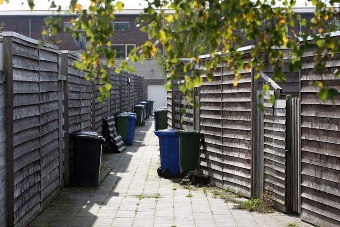 Heggen en schuttingen in Zwolle-Zuid: de biotoop waarin de ringmus - ook in Zwolle - zijn weg moet weten te vinden. GroenLinks/De Groenen zet in op meer heggen, ook nuttig voor bijvoorbeeld egels, omdat de bedreigde mus daar beter aan de kost komt. foto Tom van Dijke