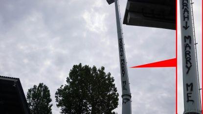 """Onbekende klimt 15 meter hoog op lichtmast KV Oostende voor huwelijksaanzoek: """"Wie is zo gek om zoiets te doen?"""""""