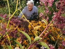 Siert uit Zeist ziet nog maar één oplossing: het boerenland moet terug naar de natuur