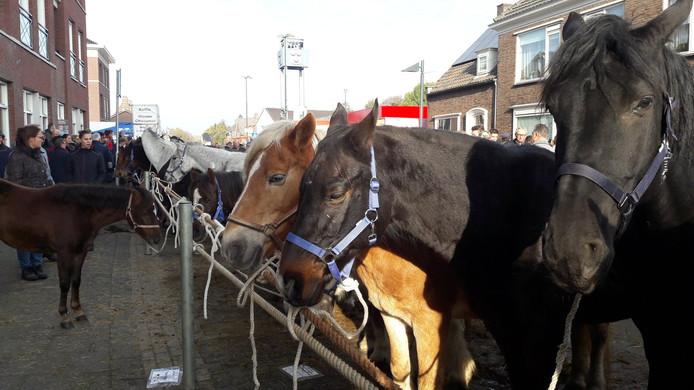 Een drukke 299ste editie van de Paardenmarkt in Hedel.