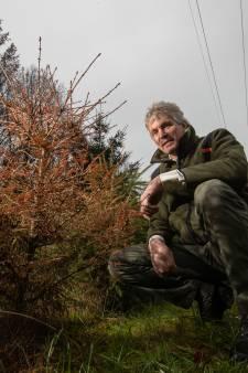 Boswachter ontdekt voorraad pillen in Kuinderbos: 'We vinden van alles, maar dít is nieuw'