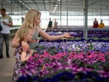 GBV: 'Geef boeren de ruimte om te ondernemen'