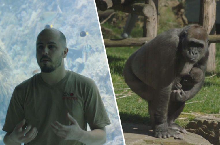Ook dieren missen menselijk contact.