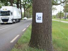 Nieuw protest op bomen langs N319