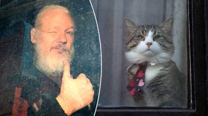 """Skateboarden door de gangen en """"uitwerpselen op muren smeren"""": daarom raakten de Ecuadorianen Julian Assange beu"""
