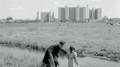 Vlaamse filmpionier Rik Kuypers overleden