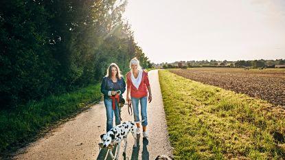 """Campagne 'Te Gek?!' wil mensen aan het wandelen krijgen: """"Buitenlucht en beweging is de ideale cocktail voor ons brein"""""""