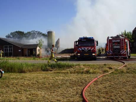 Duizenden kippen komen om door uitslaande schuurbrand in Beltrum: 'Dit is afschuwelijk'