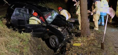 Heftige frontale botsing met boom in Luyksgestel, man raakt gewond