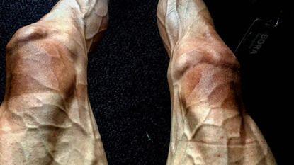 Zo afgepeigerd/afgetraind kunnen Tourbenen eruit zien na 16 dagen koers