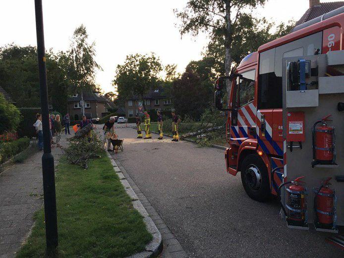 Aan de Gunninglaan in Apeldoorn sneuvelde een berk als gevolg van de heftige wind