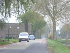 'Natuurlijk sturen' in plaats van drempels in Benedeneind in Benschop
