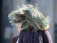 Encore beaucoup de vent ce week-end