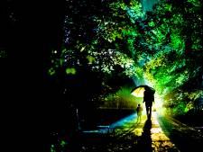 Kralingse Bos deze herfst opnieuw in de spotlights tijdens magische lichtshow De Grote Schijn