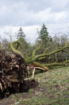 Storm: zware windstoten voorbij