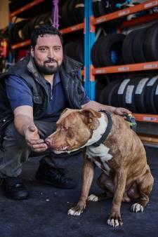 Dierenvriend Hamza krijgt geld voor nieuwe kippen in de garage: 'Thuis mocht ik niet eens goudvissen'