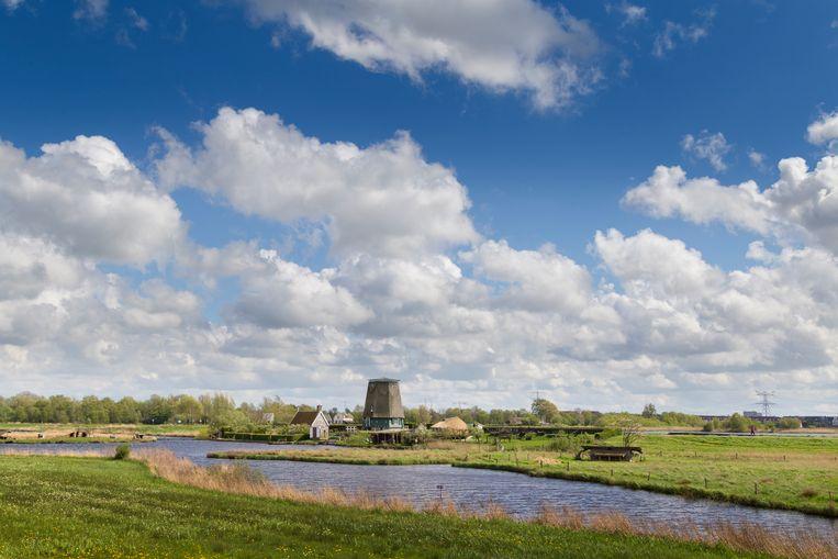 Natuurpark het Twiske ten noorden van Amsterdam, 25 april.  Beeld Pauline Niks