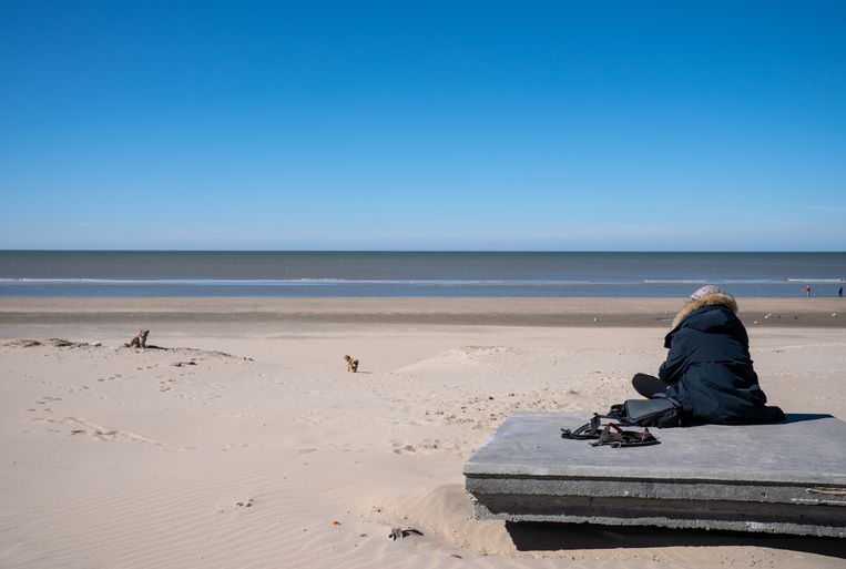 Een zonnige middag op Zandvoort.  Beeld BSR Agency