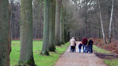 Zondag 'Speel erop Bos' in provinciaal domein Het Leen
