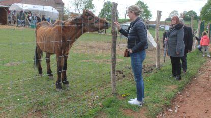 Volkstoeloop voor opening Ark van Pollare: dierenasiel opent officieel de deuren